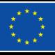 co-funded-h2020-horiz_en-flag